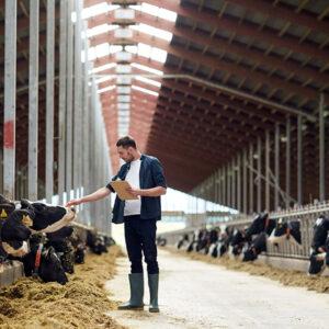 Landwirtschaft & Tierhaltung